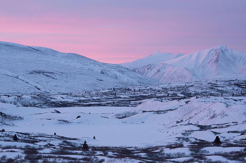 Yukon winter scenery