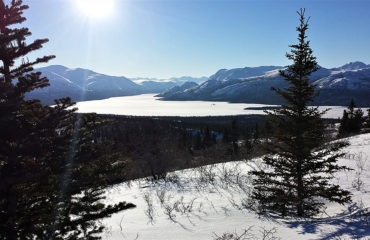 Yukon winter scenery